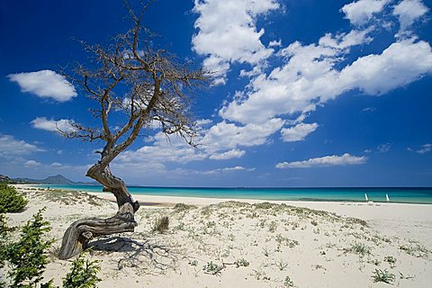 Costa Rei, Muravera, Castiadas, Provincia di Cagliari, Sardinia, Italy, Europe