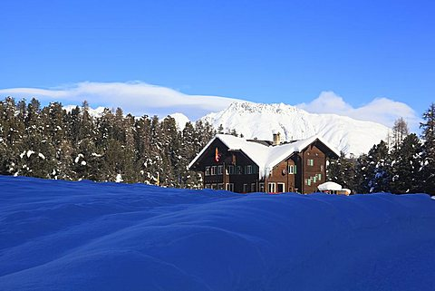 House in the pinewood with snow near di St. Moritz, Engadin, canton of Graubvºnden, Switzerland, Europe