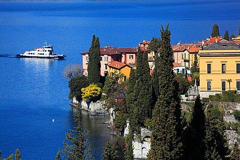 Cypress, Varenna, Como lake, Lombardy, Italy