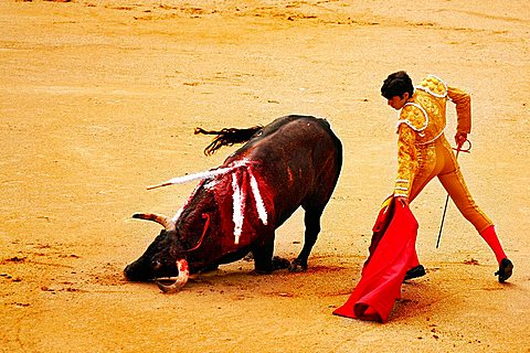 Bullfighting, La Venta, Madrid, Spain, Europe
