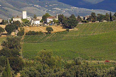 Cantina Rocca dei Fabbri, Montefalco, Umbria, Italy, Europe