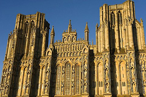 Cathedral Church of Saint Andrew, Wells, Somerset, England, United Kingdom, Europe