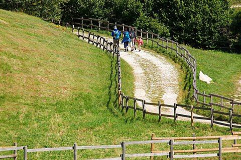 Malga Fratte near Sega di Ala in Lessinia, Trentino Alto Adige, Italy, Europe