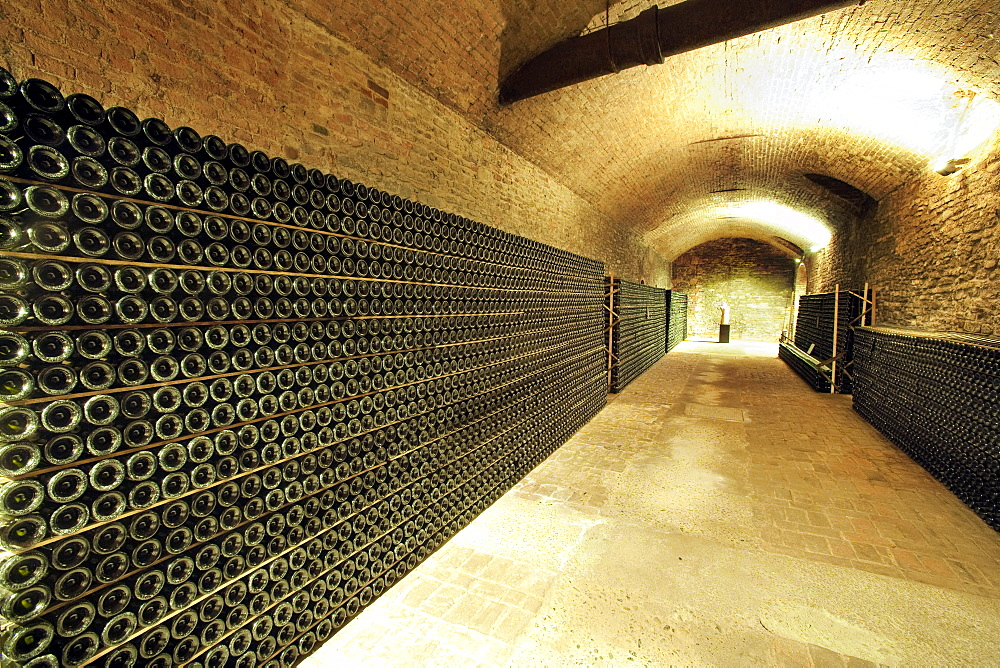 Bosca underground wine cathedral in Canelli, Asti, Piedmont, Italy, Europe
