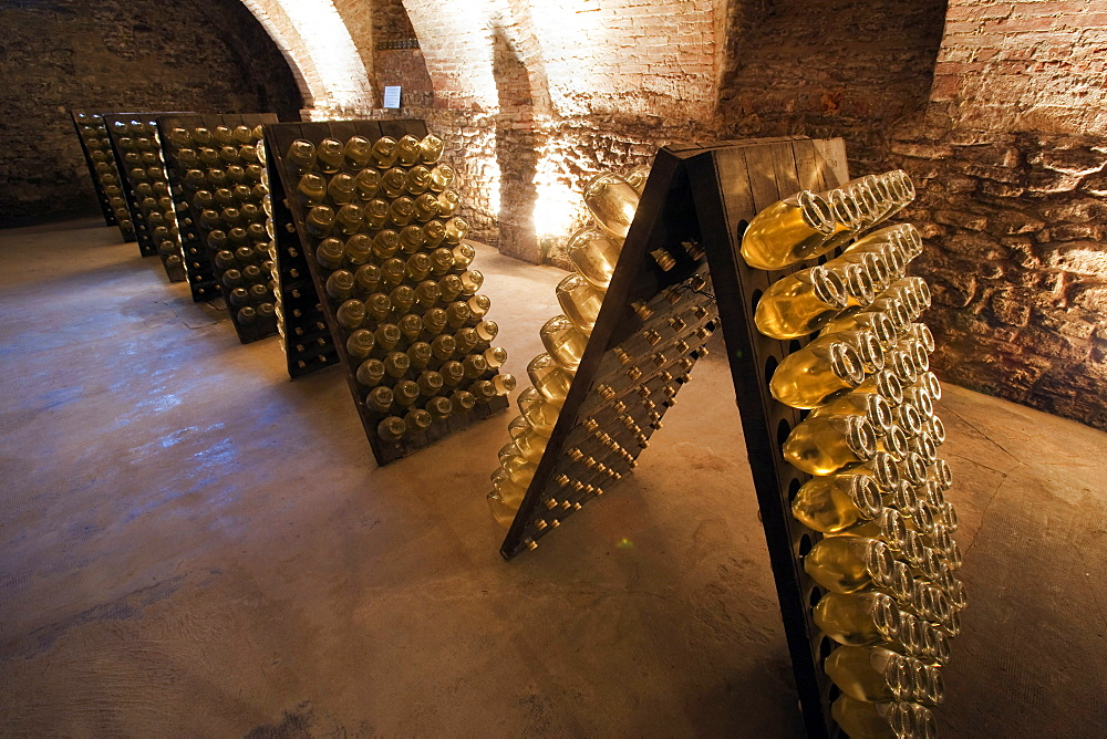Bosca underground wine cathedral in Canelli, spumante bottles, Asti, Piedmont, Italy, Europe