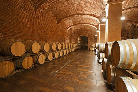 "Gancia underground wine cathedral in Canelli, the barrels made by oak wood and named ""barriques"" where the wine is maturing,  Asti, Piedmont, Italy, Europe"