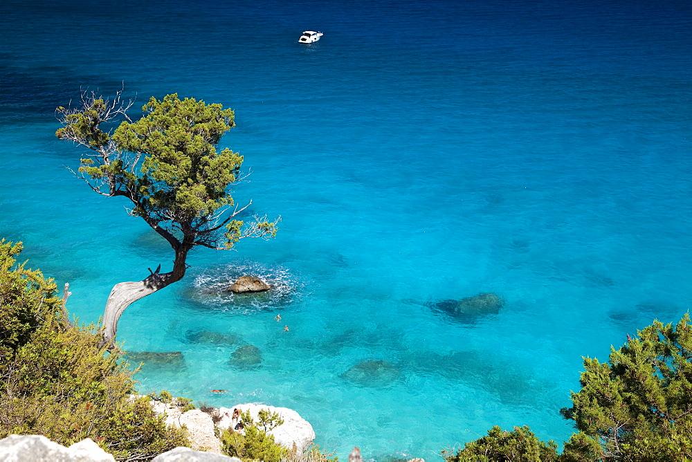 Cala Goloritzvû, Baunei (OG), Sardinia, Italy, Europe