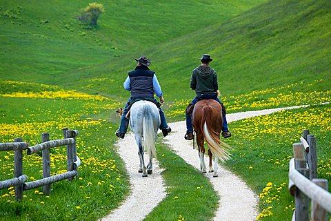 Horse trekking near Fratte hut, Sega di Ala, Monti Lessini, Trentino Alto Adige, Italy, Europe