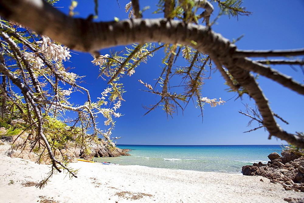 Chia beach, Monte Cogoni, Campana, Chia, Domus De Maria (CA), Sardinia, Italy, Europe