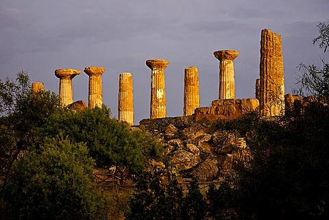 Valle dei Templi valley, Agrigento, Sicily, Italy, Europe