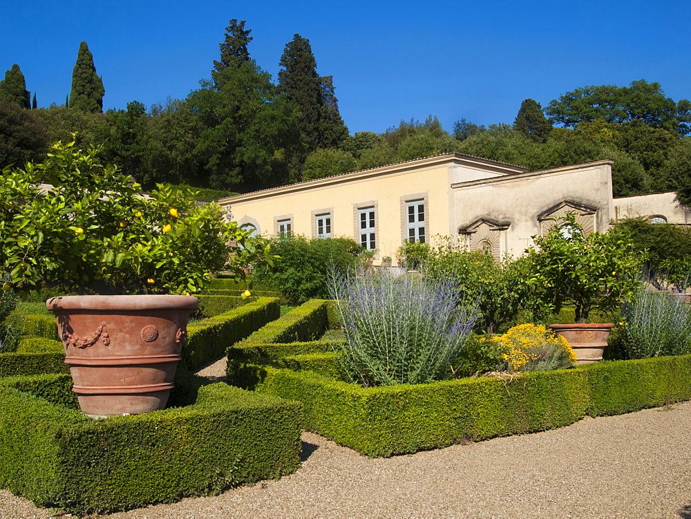 The garden of Villa Medicea di Castello, Sesto Fiorentino, Florence, Tuscany, Italy, Europe