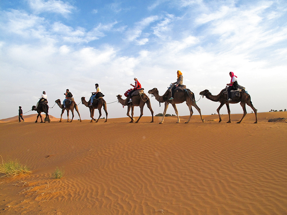 Erg Chebbi Desert, tour with the camels, Morocco, North Africa