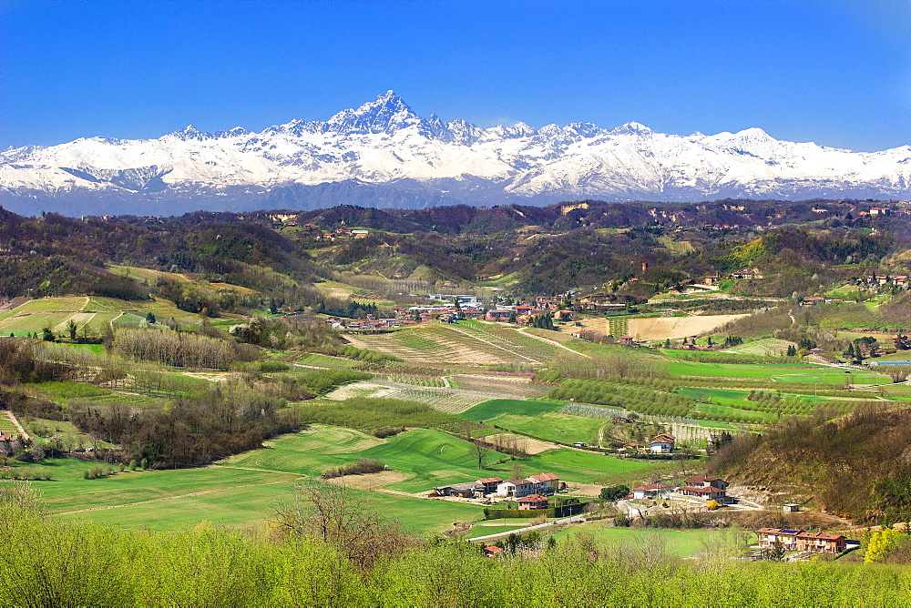 Landscape with Monviso on the back in Langhe, Piemonte, Italy, Europe