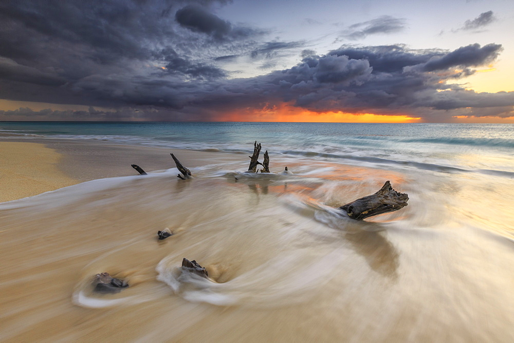 Caribbean sunset frames tree trunks on Ffryers Beach, Antigua and Barbuda, Leeward Islands, West Indies