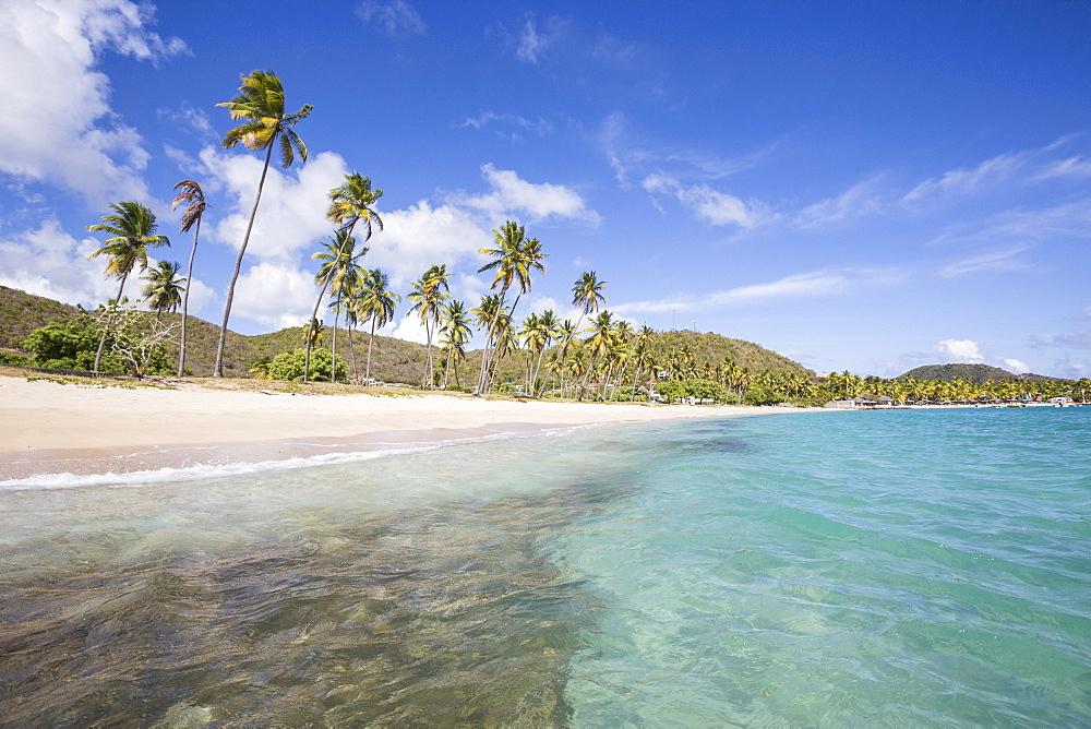 The long beach surrounded by palm trees and the Caribbean Sea, Carlisle, Morris Bay, Antigua and Barbuda, Leeward Island, West Indies