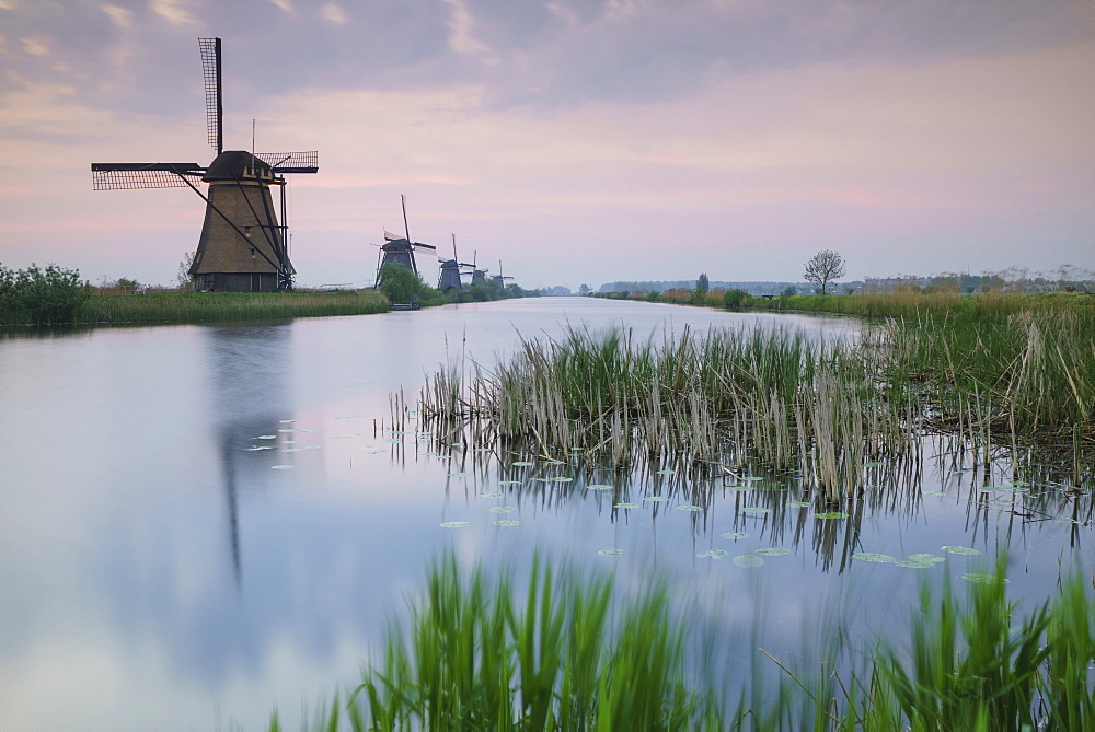 Sky is tinged with purple at dawn on the windmills reflected in the canal Kinderdijk, Rotterdam, South Holland, Netherland, Europe