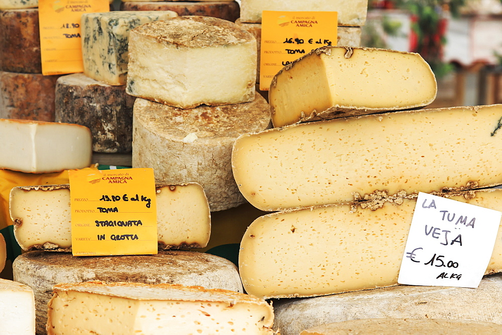Closeup of Italian cheese with relative price tags at the Moncalvo truffle fair, Moncalvo, Piedmont, Italy, Europe