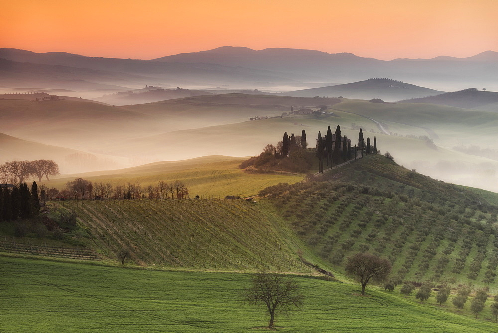 Podere Belvedere, San Quirico d'Orcia, Val d'Orcia, Tuscany, Italy, Europe