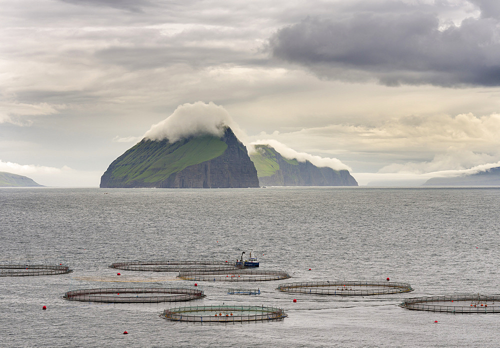 Salmon cages in the Vagafjordur, teh islands  Streymoy, Koltur, Hestur and Sandoy in the background.   The island Vagar, part of the Faroe Islands in the North Atlantic.  Europe, Northern Europe, Denmark, Faroe Islands