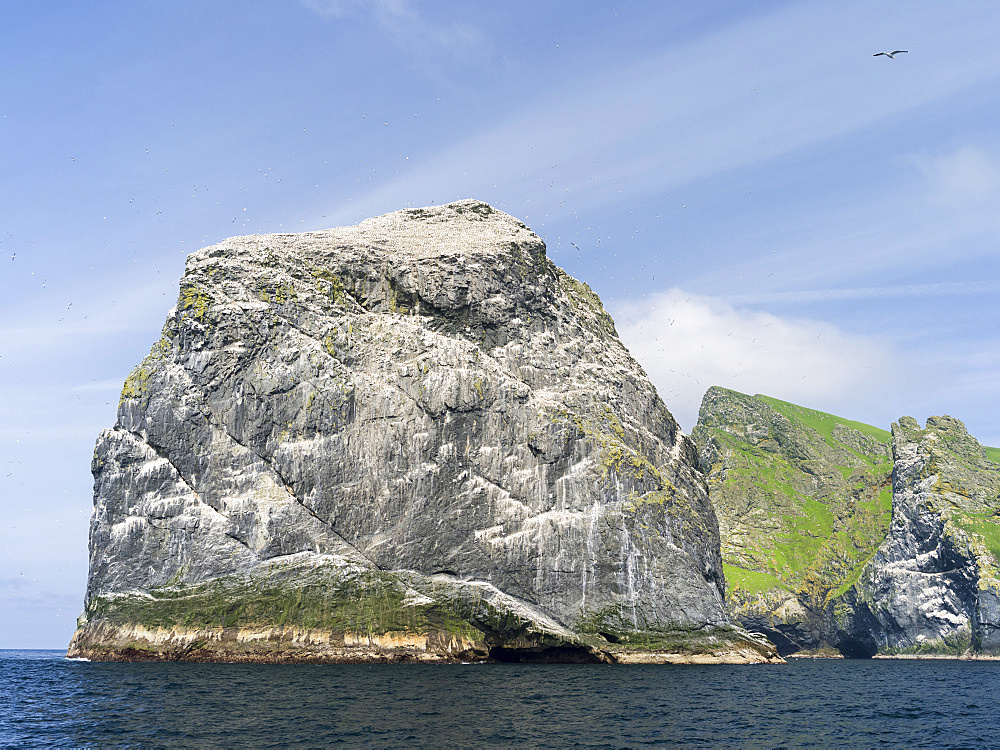 The islands of St Kilda archipelago in Scotland. Island of Boreray and Stac Lee  having the largest northern gannet (morus bassanus) colonies worldwide. It is one of the few places worldwide to hold joint UNESCO world heritage status for its natural and cultural qualities. Europe, Scotland, St. Kilda, July