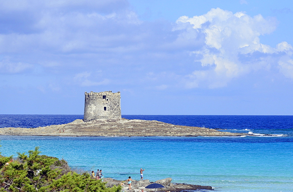 la Pelosetta beach, Stintino, Sassari, Sardinia, Italy, Europe - 746-88476