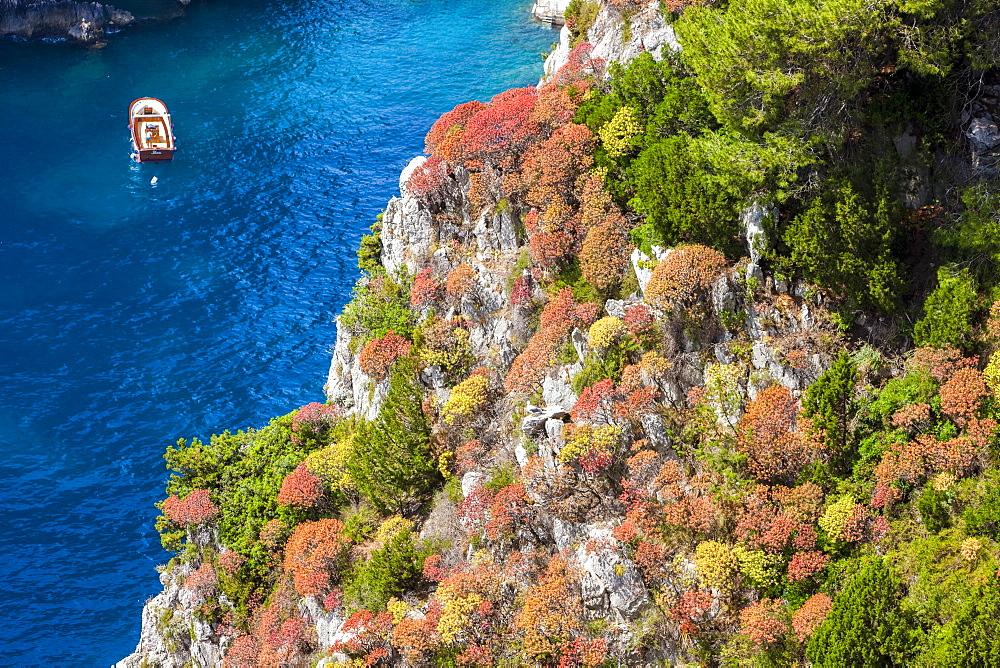 Cliff, Capri island, Campania, Italy, Europe - 746-88512