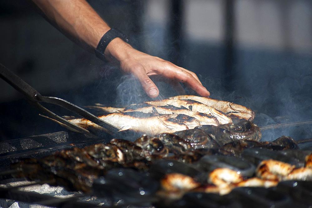 Mullet grilled, Feast of Santa Vitalia, Serrenti, Sardinia, Italy, Europe