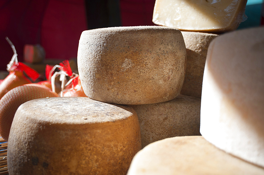 Traditional Sardinian sheep and goat milk cheese, Feast of Santa Vitalia, Serrenti, Sardinia, Italy, Europe