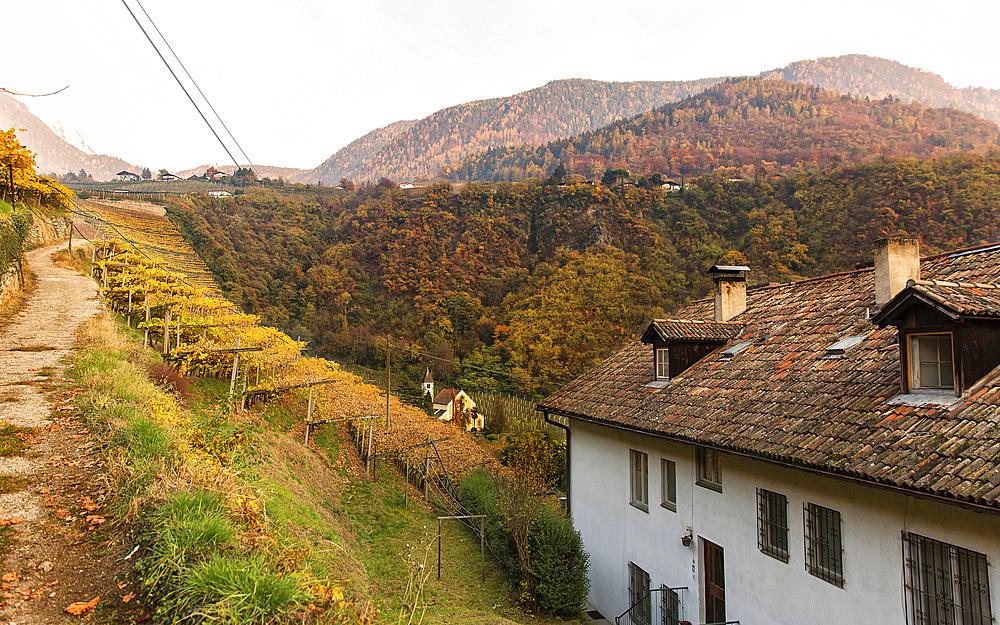 Merano landscape, Merano, Trentino Alto Adige, Italy.