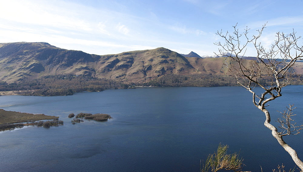 Catbells from Surprise View across Lake Derwentwater, Keswick, Lake District National Park, Cumbria, England, United Kingdom, Europe
