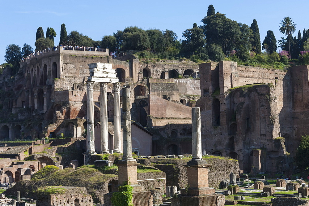 Ancient Roman Forum and the three columns of Temple of Castor and Pollux, UNESCO World Heritage Site, Rome, Lazio, Italy, Europe