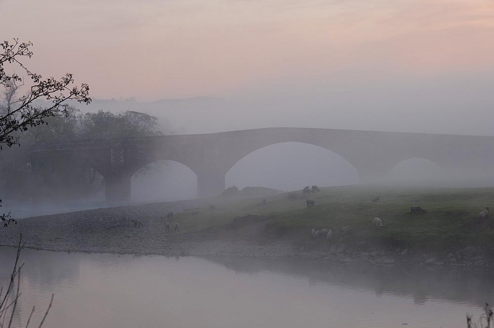 Eden Bridge, Lazonby, Eden Valley, Cumbria, England, United Kingdom, Europe