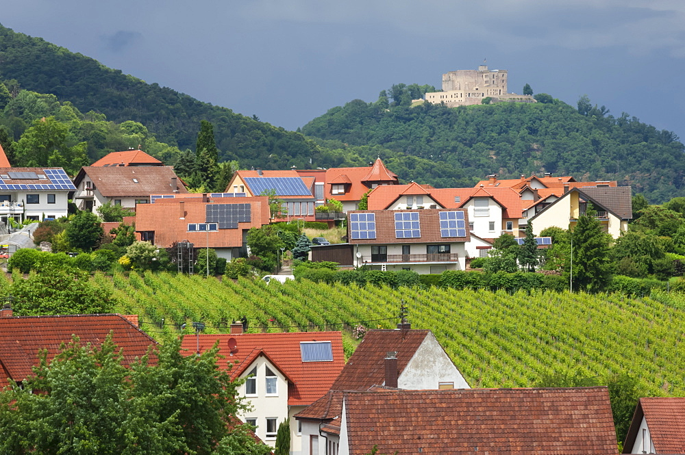 Village of St. Martin amongst vineyards in the Pfalz area, Germany, Europe