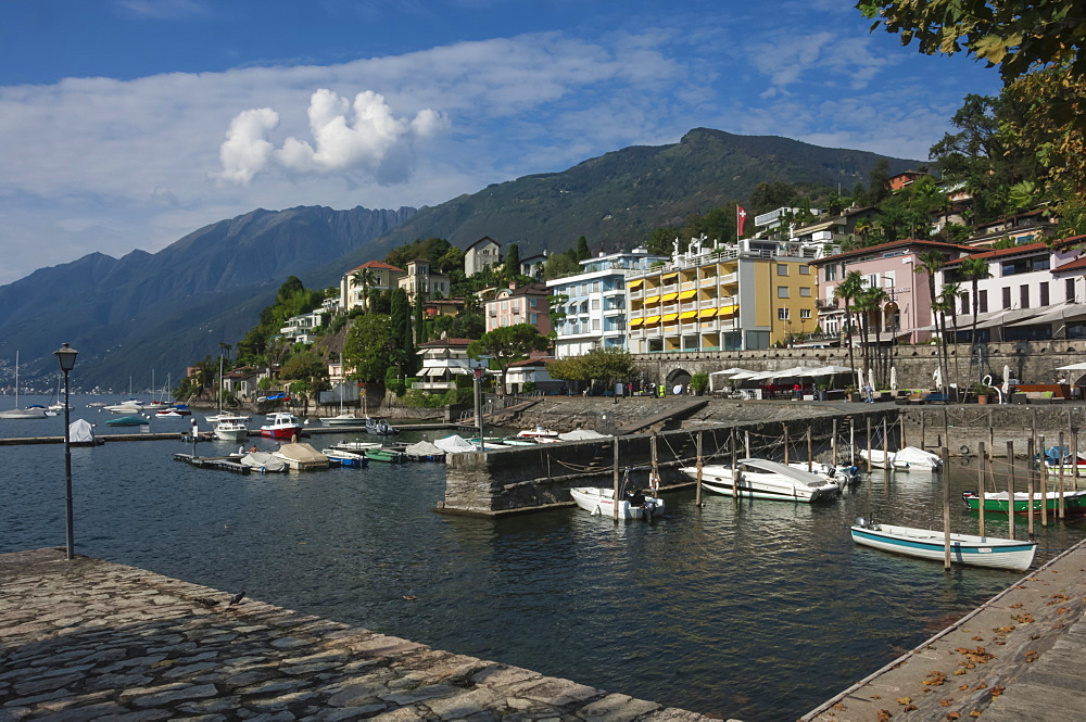 Old Harbour, Ascona, Locarno, Lake Maggiore, Ticino, Switzerland, Europe - 747-1807