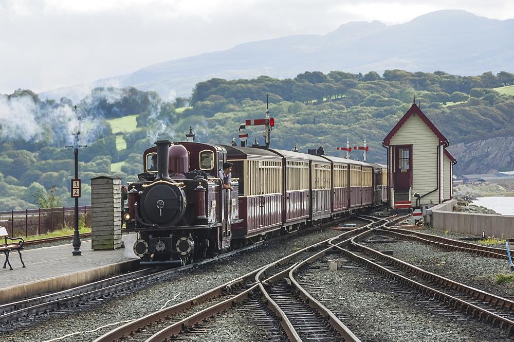 Narrow gauge Blaenau Ffestiniog railway station at Porthmadog, train arriving, Llyn Peninsular, Gwynedd, Wales, United Kingdom, Europe - 747-1880