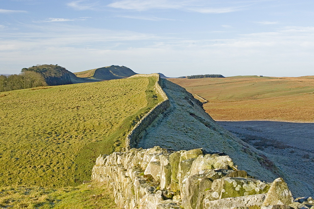 Looking west from Kings Hill to Housesteads Wood, Hotbank and Cuddy Crags, Hadrians Wall, UNESCO World Heritage Site, Northumbria, England, United Kingdom, Europe