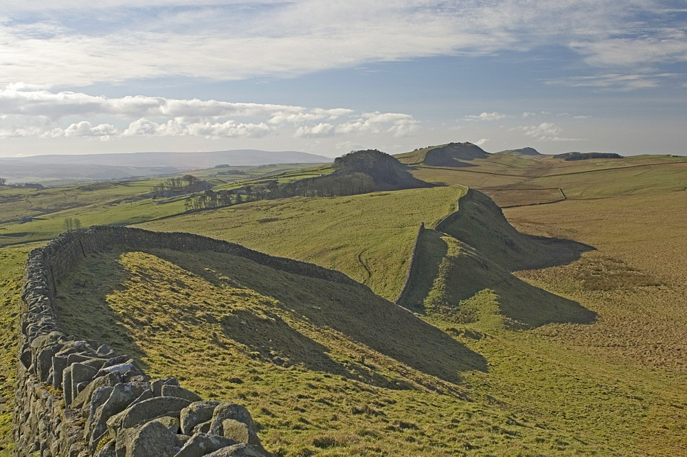 Looking west from Kings Hill to Housesteads fort and Crag, Cuddy and Hotbank Crags, Hadrians Wall, UNESCO World Heritage Site, Northumbria, England, United Kingdom, Europe