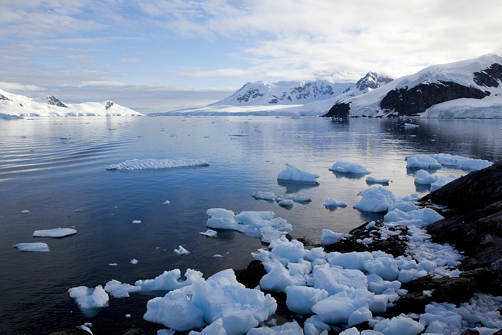 Glacier, Paradise Bay, Antarctic Peninsula, Antarctica, Polar Regions - 748-1217