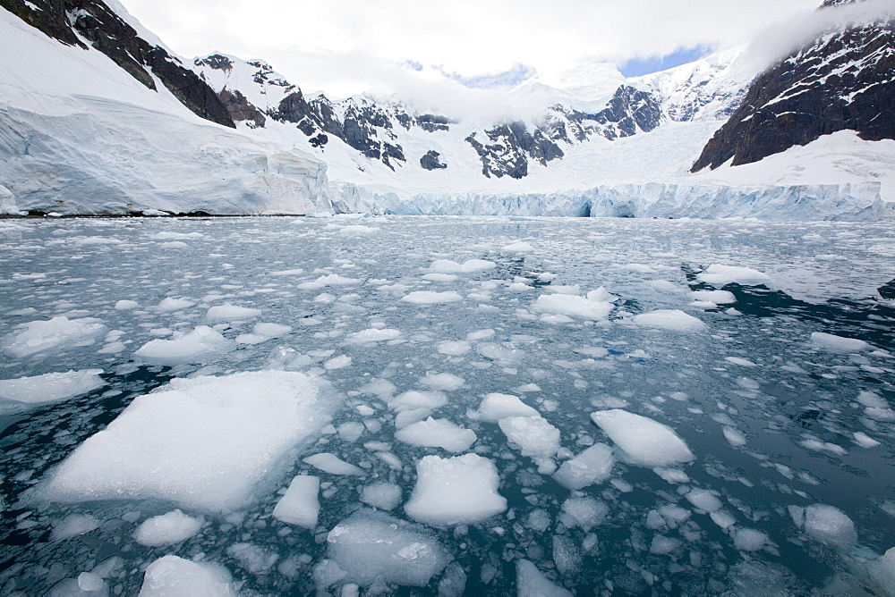 Glacier, Paradise Bay, Antarctic Peninsula, Antarctica, Polar Regions - 748-1220