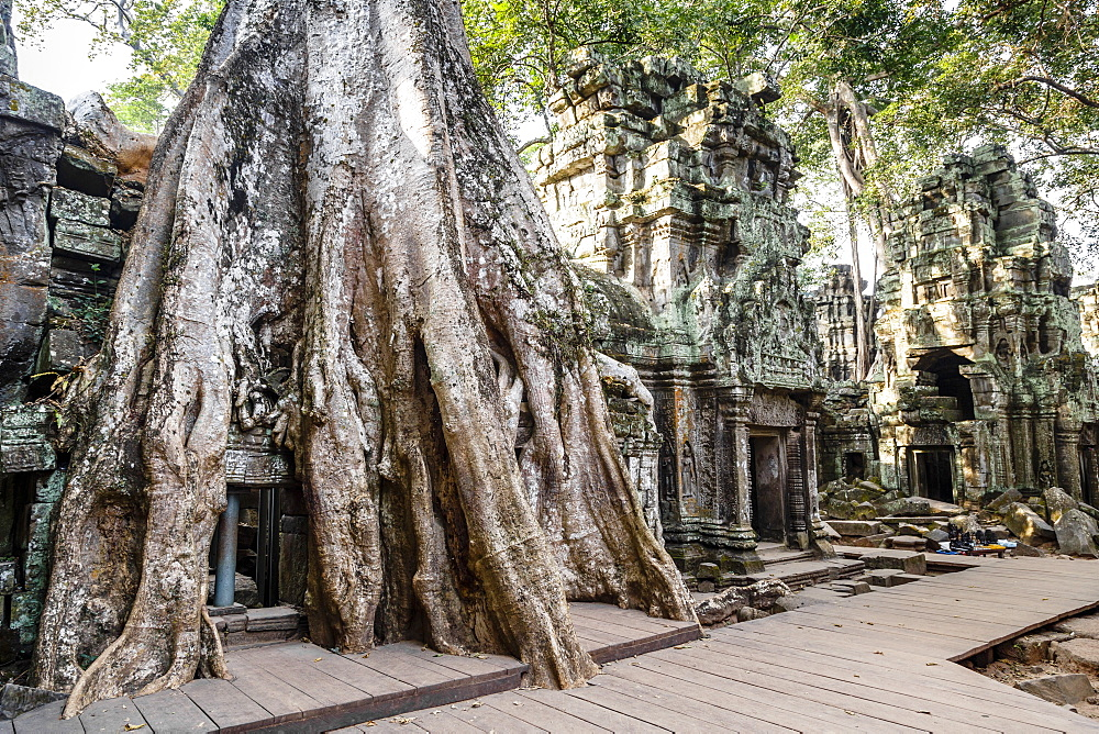 Ruins of the Ta Prohm Temple, Angkor, UNESCO World Heritage Site, Cambodia, Indochina, Southeast Asia, Asia