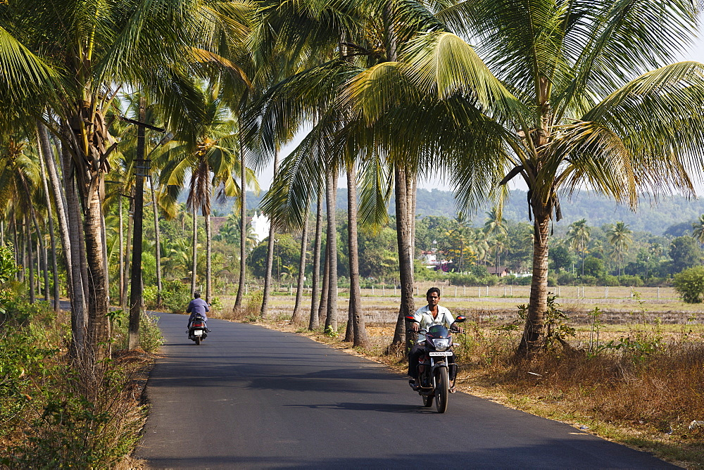 Typical road scene, Goa, India, Asia