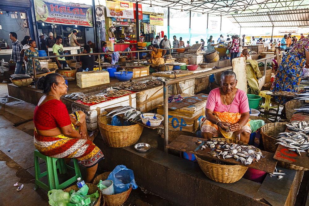 Fish Market, Calangute, Goa, India, Asia