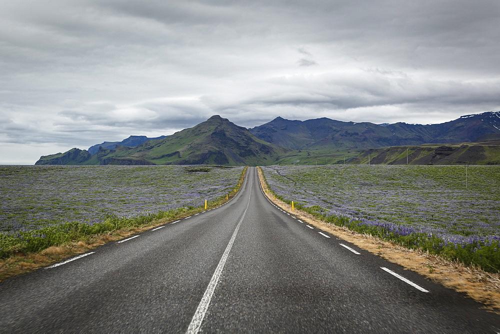 Empty road, Iceland, Polar Regions