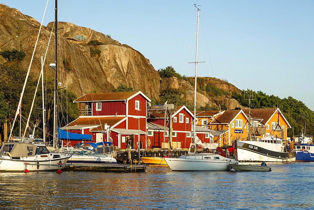 View over the port, Grebbestad, Bohuslan region, west coast, Sweden, Scandinavia, Europe
