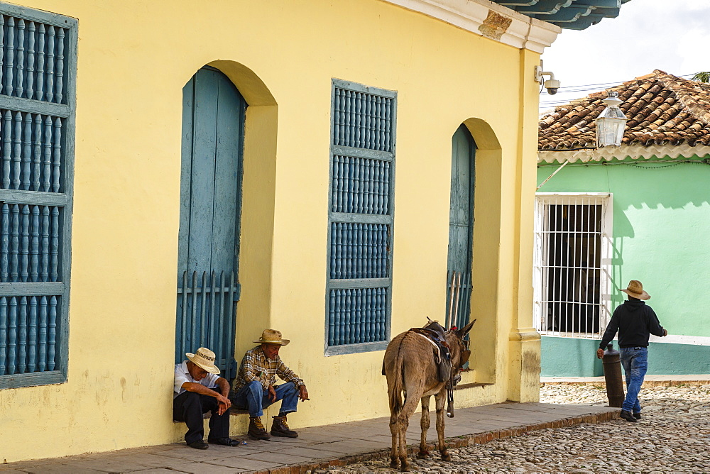 Elderly men sitting with donkey at the street, Trinidad, Sancti Spiritus Province, Cuba, West Indies, Caribbean, Central America - 749-2305