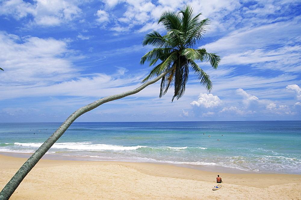 Palm tree and surfer, Hikkaduwa beach, island of Sri Lanka, Indian Ocean, Asia
