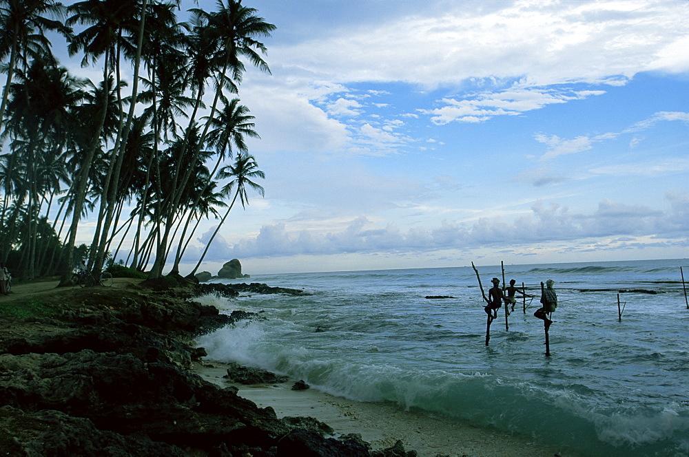 Stilt fishermen fishing from their poles between Unawatuna and Weligama, Sri Lanka, Asia