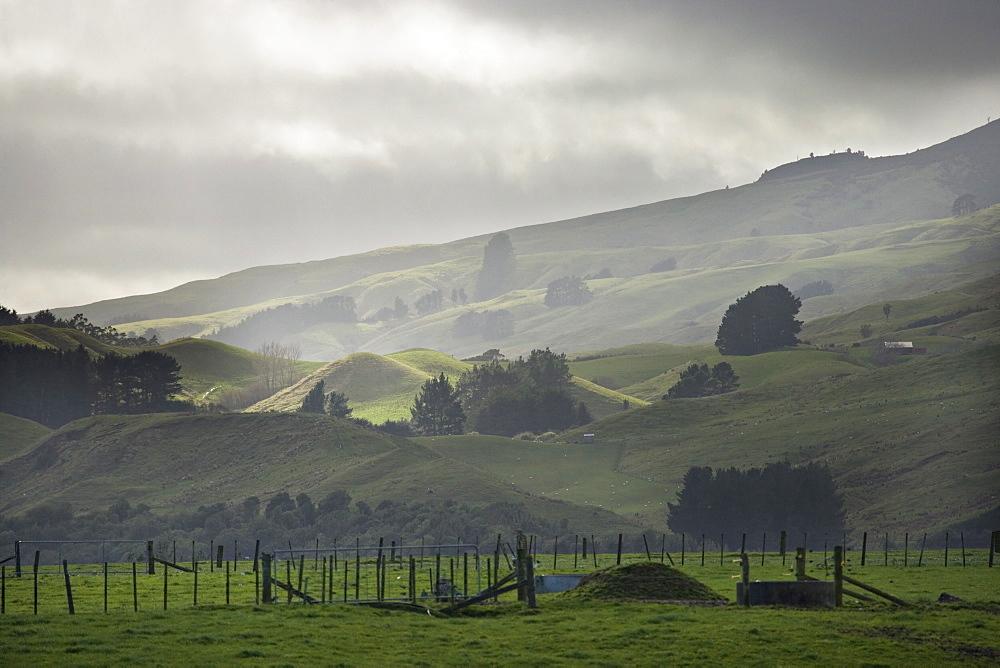 Winter mist and stormy weather, rural pasture and farmland, Ruahine ranges, Manawatu, North Island, New Zealand, Pacific