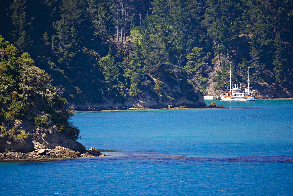 Boat at a private pier, Marlborough Sounds, South Island, New Zealand, Pacific