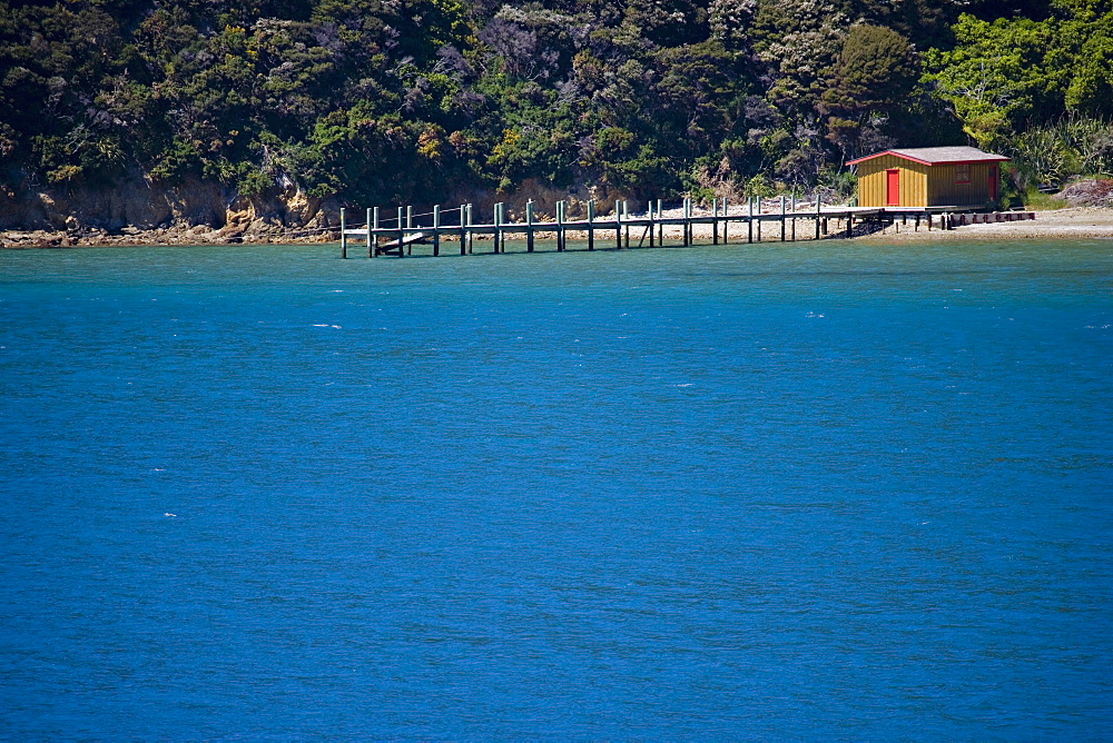 Boat shed and jetty, Marlborough Sounds, South Island, New Zealand, Pacific